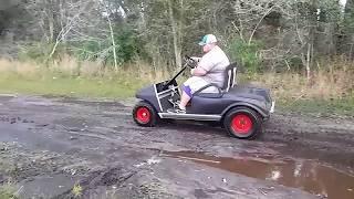 420cc Gas vs Stock Electric Golf Cart