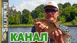 Рыбалка на канале: фидер, подлещик, начало августа [salapinru](Очередная рыбалка с фидером состоялась на канале им. Москвы в начале августа. Поехал в одно местечко, которо..., 2016-08-16T05:51:48.000Z)