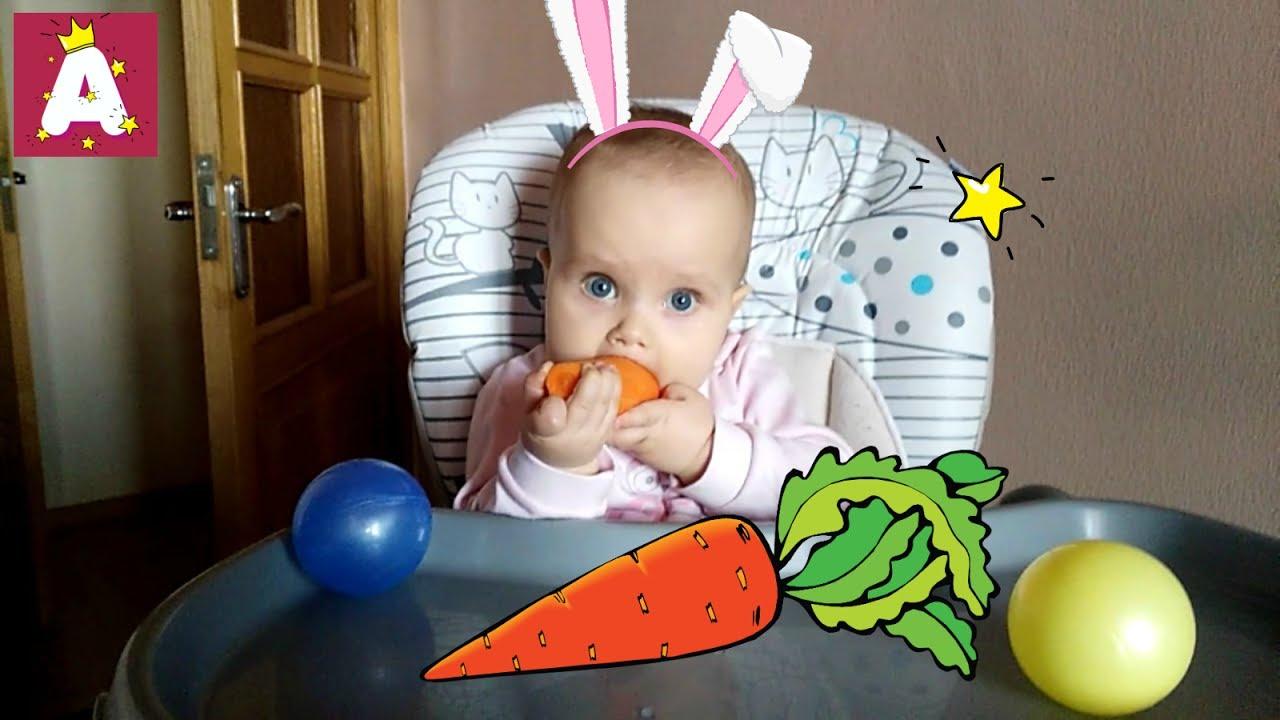 Кролик с морковкой: фото и картинка кролик с морковкой 11