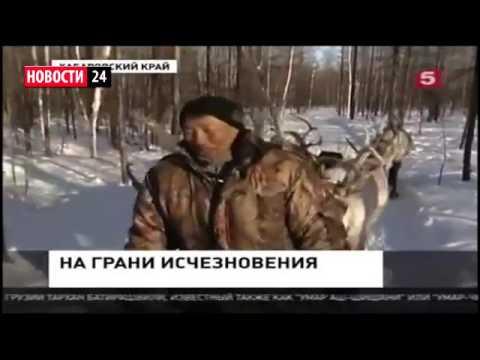 Новости в селе пески поворинского района