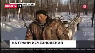 видео Мировые новости спорта