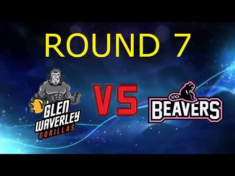 2017 Victorian Dodgeball League Round 7: Glenwaverley Gorillas vs Brunswick Beavers