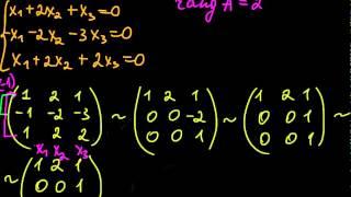 §41 Решение систем линейных однородных уравнений