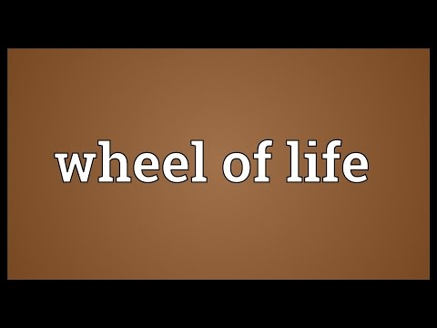 Wheel of life Meaning
