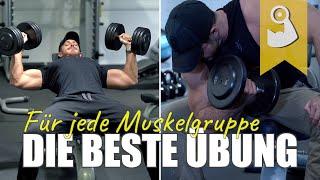 Die beste Übung für jede Muskelgruppe
