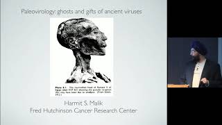 Paleovirology: Ghosts And Gifts Of Ancient Viruses