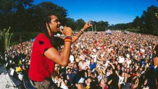 Michael Franti & Spearhead Dj Spooky Remix - Rock the nation (radio edit)