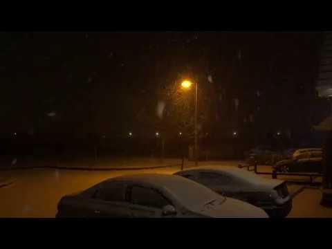 Snow Newbridge