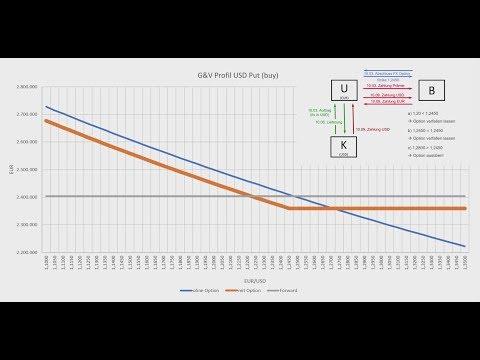 FX Option einfach erklärt mit Beispiel