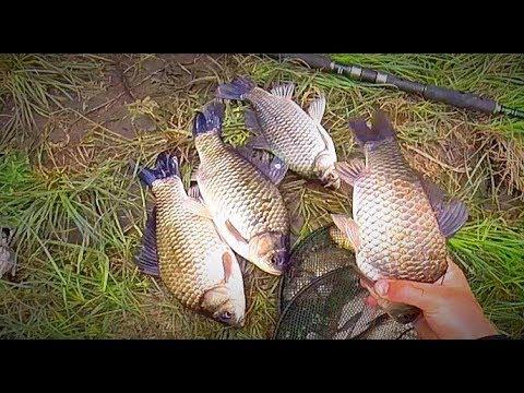 Рыбалка на крупного