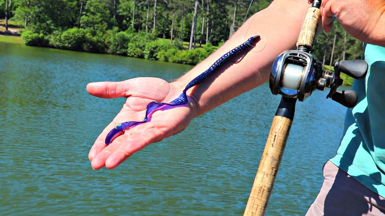 Fishing Big Worms for Giant Bass!