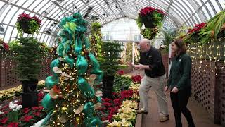 In the Garden: Touring the Winter Flower Show at Phipps