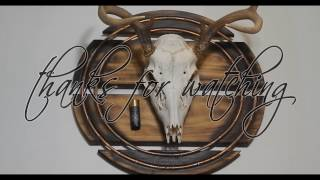 How to make a deer skull wall hanger from junk