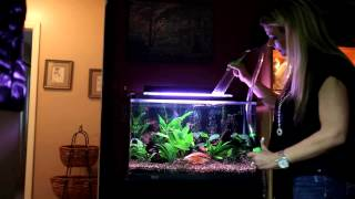 Python No Spill Water Change System