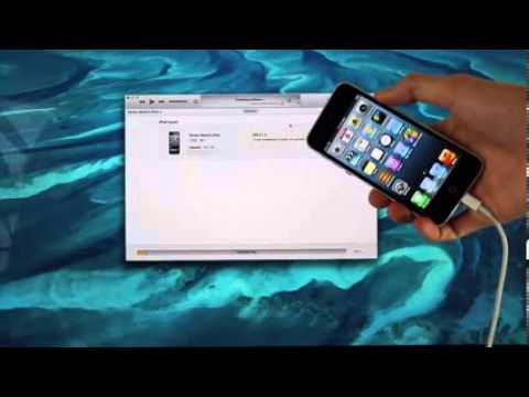 Without download ios udid iphone 3 7 4 beta