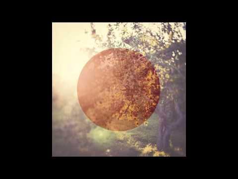 Biosphere - Inner Ohm