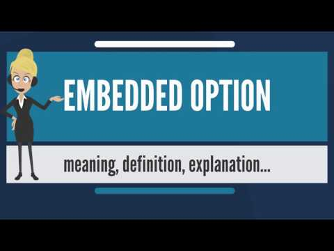 What is EMBEDDED OPTION? What does EMBEDDED OPTION mean? EMBEDDED OPTION meaning & explanation