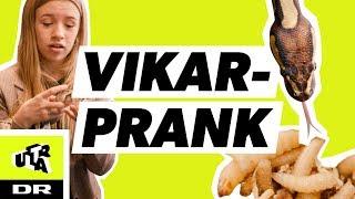 FAILED vikar prank med slanger, mider og Klassen! | PEK: Pranksters Elite Klub! | Ultra