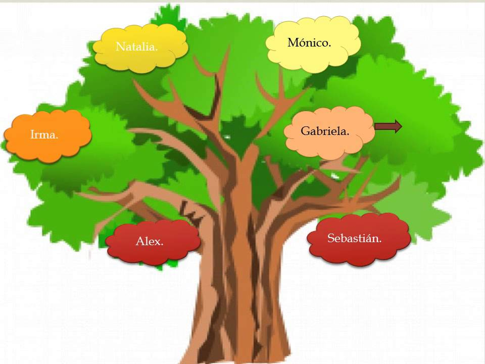 árbol Genealógico Youtube