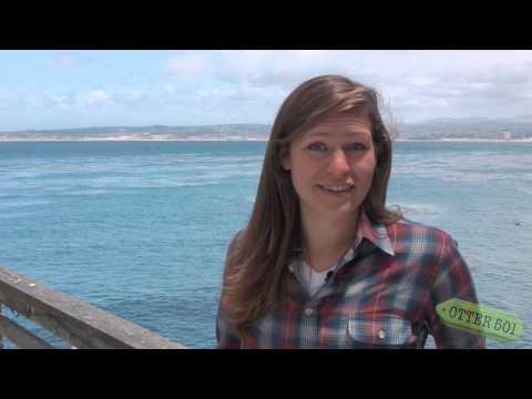 Mini Doc: San Nicolas Island