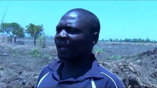 World Vision and Malawi Govt Dyke gives hope to Zomba people