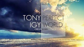 Baixar Tony Igy - Perfect World (Original Mix)