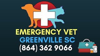 After Hours Vet Greenville SC| Emergency Veterinary Clinic Greenville South Carolina|(864) 362 9066