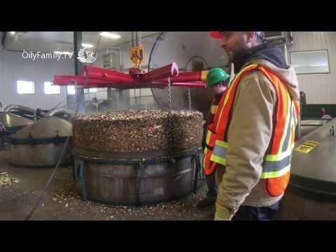 ✅ Distilling Essential Oils - Behind The Scenes   Essential Oil TV