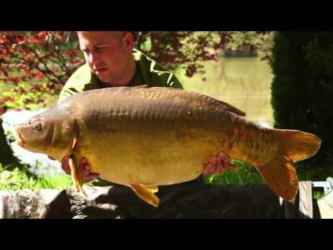 Feature length carp fishing vlog at Etang Des Landes France