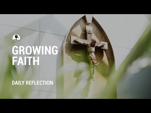 Tuesday 16 February Reflection with Dc Mike O'Neill