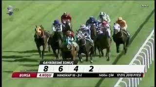 At jokeysiz birinci oldu