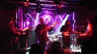 """Ultraviolet Hippopotamus """"Cream Soda~Making Flippy-Floppy"""" Funky Buddha Boca Raton, FL 10-21-2011"""