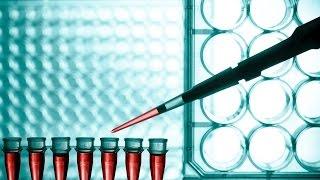 Planet Wissen - Künstliche Organe - Rettung aus dem Reagenzglas