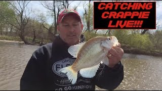 DOUBLE DIPPING Crappie Fishing Technique - Recorded Live!!