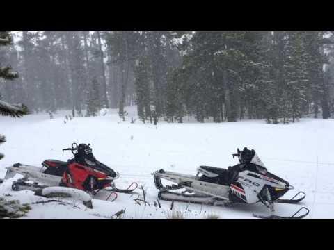 Bear Lodge GoPro Edit Spring Break 2016