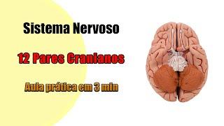 Nos nervos danos cerebrais curando