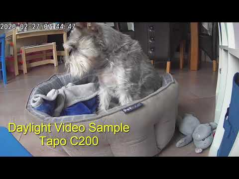 TpLink Tapo C200 Video Samples