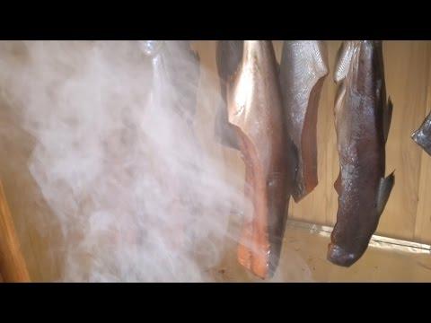 Холодное копчение рыбы полный обзор