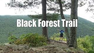 Backpacking the Black Foŗest Trail, Pennsylvania