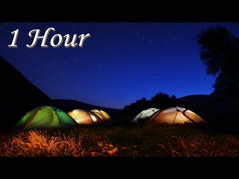 Instrumental Relaxing Music for Overnight Camping