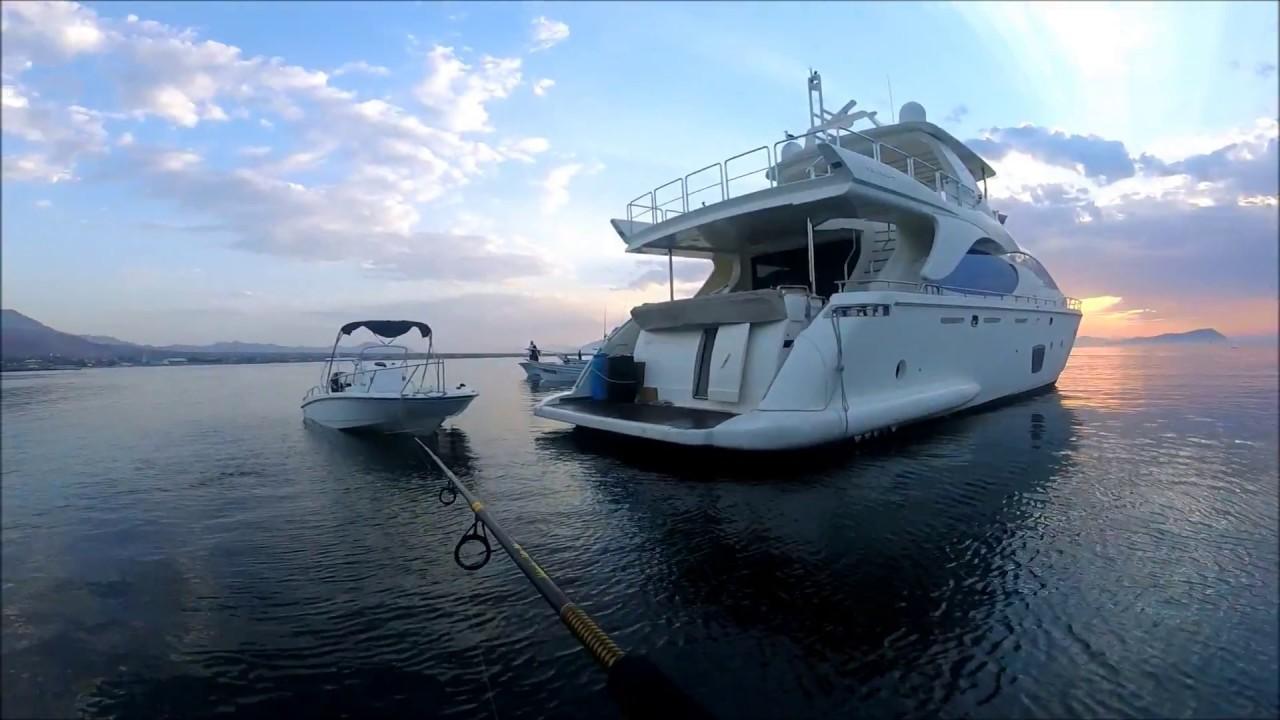 Bahia de los angeles 2017 fishing youtube for Fishing in los angeles