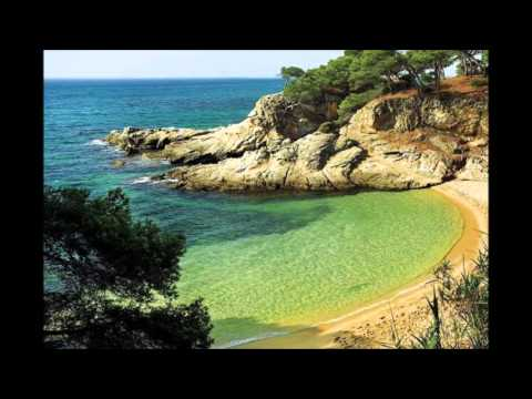 DJ Creek- Tropico
