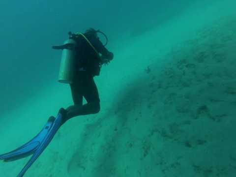Barbados Wreck Penetration Dive!