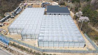 푸르메소셜팜 유리온실 완공, 푸르메의 꿈이 이뤄지는 과…