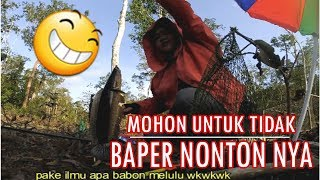 Menyerbu Sarang Ikan Kihung/Forest Snakehead Casting Gabus Bersama Istri Ep # 22 I Part 2 -2