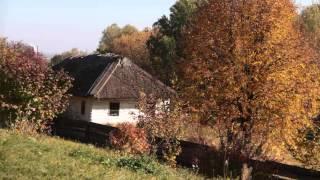 Свадебный клип локация Пирогово