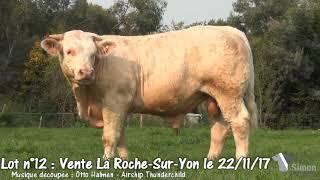 Lot 12 Vente Simon Genetic La Roche-Sur-Yon 22/11/2017