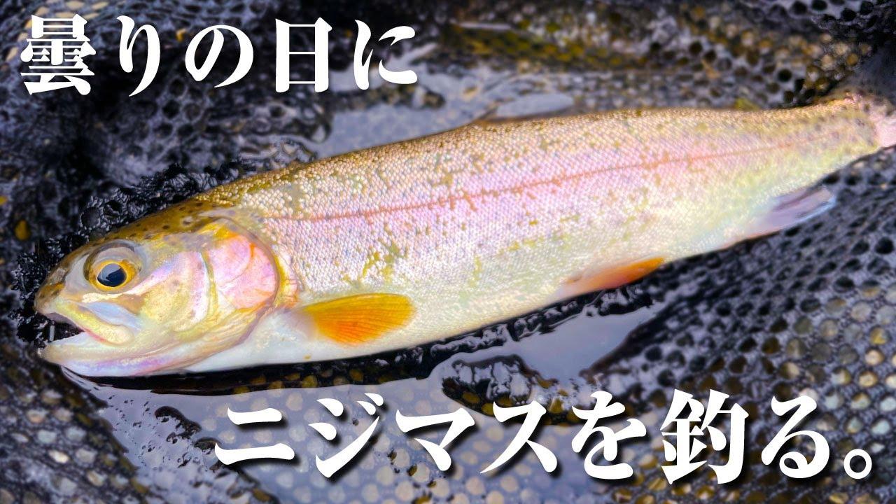曇りの日に都内の川でニジマスを釣ったのだが........。GoPro Hero9【渓流釣り #03】