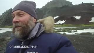 Антарктида. Ст. Беллинсгаузен. Бухта Биологов