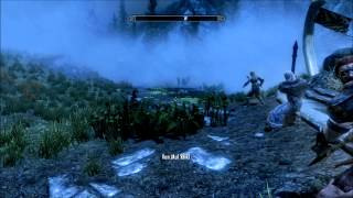 The Elder Scrolls V Skyrim 008 - Gold Trophy: Dragonslayer